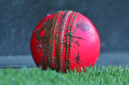 Cricket Australia looks forward to develop the pink ball used in the inaugural day-night Test in Adelaide © Getty Images