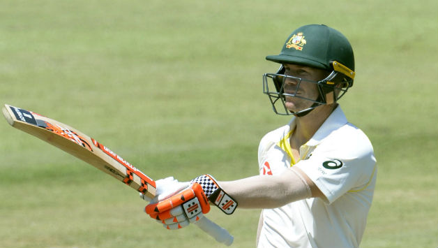 David Warner scored his 30th Test fifty (Image courtesy: Getty Images )