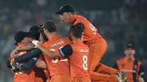 Netherlands scripted an almost fairytale World T20 tale