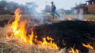 India send crop stubble to South Africa to deploy smog